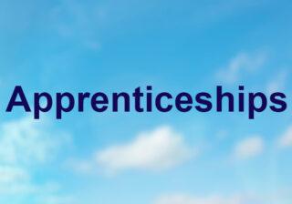 Apprenticeship box