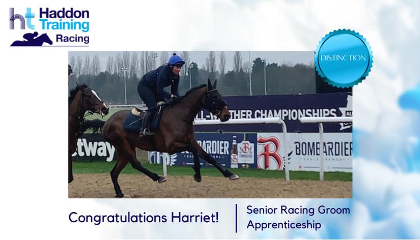 racing-groom-apprenticeship Harriet Dickins
