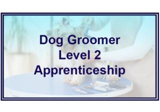 Dog Groomer L2